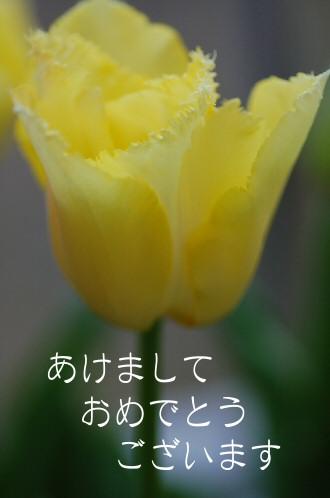 091229churi